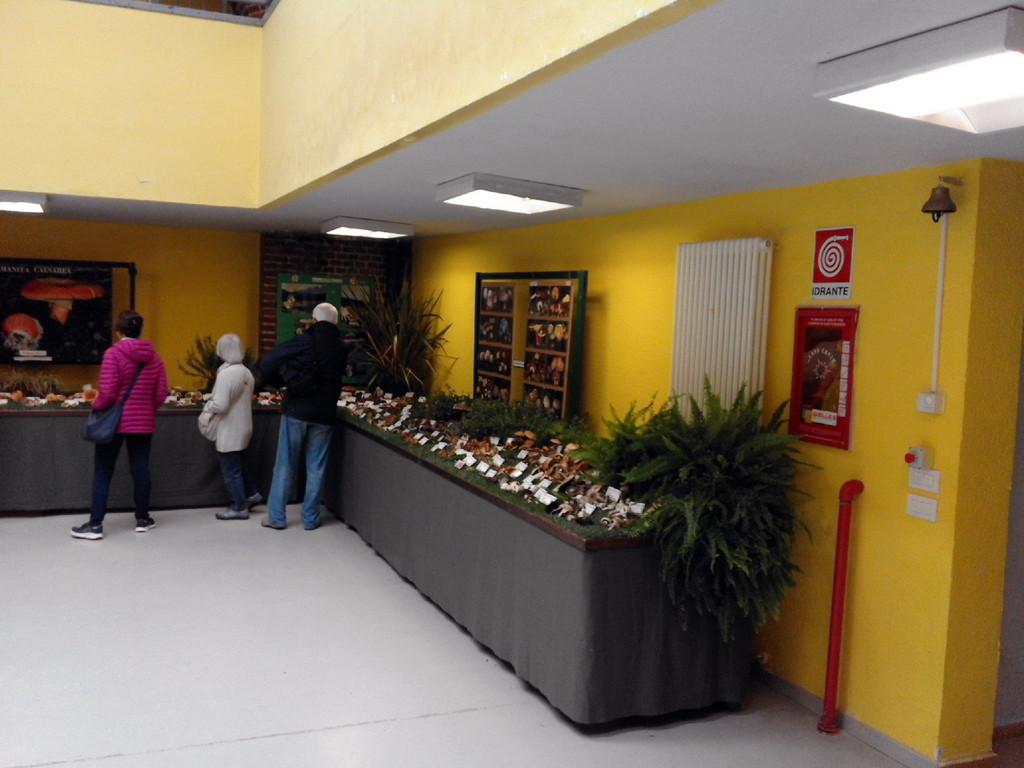 I tavoli della mostra