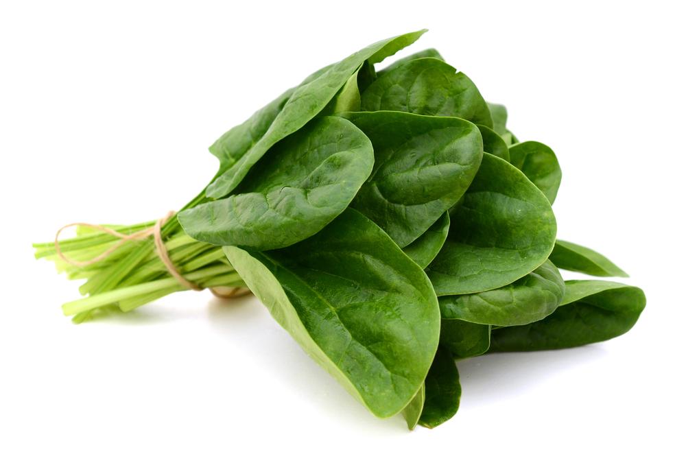 Spinatpulver - für die grüne Farbe ganz ohne synthetische Farbstoffe