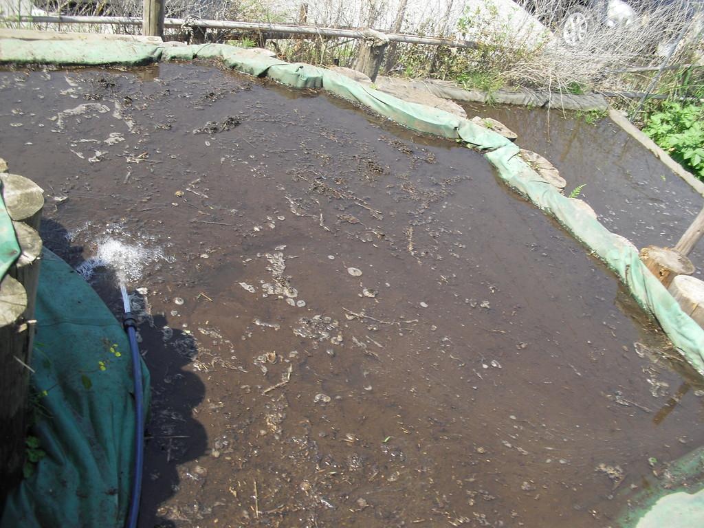 田んぼに水を入れていきます。