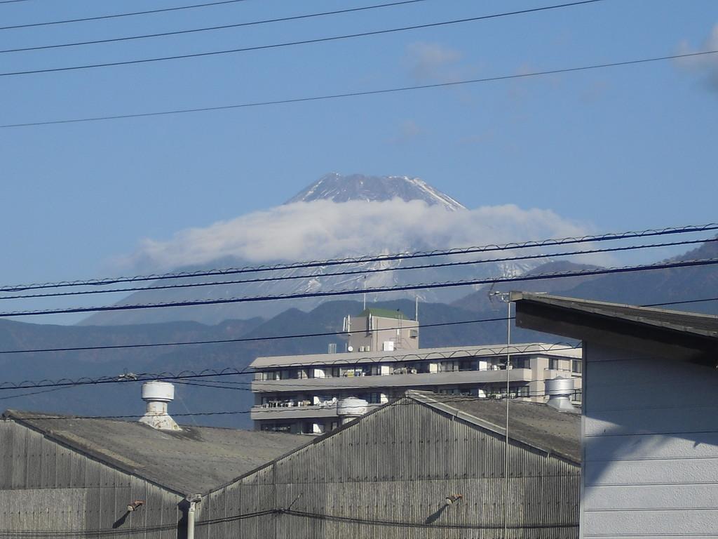 今日の富士山です♪