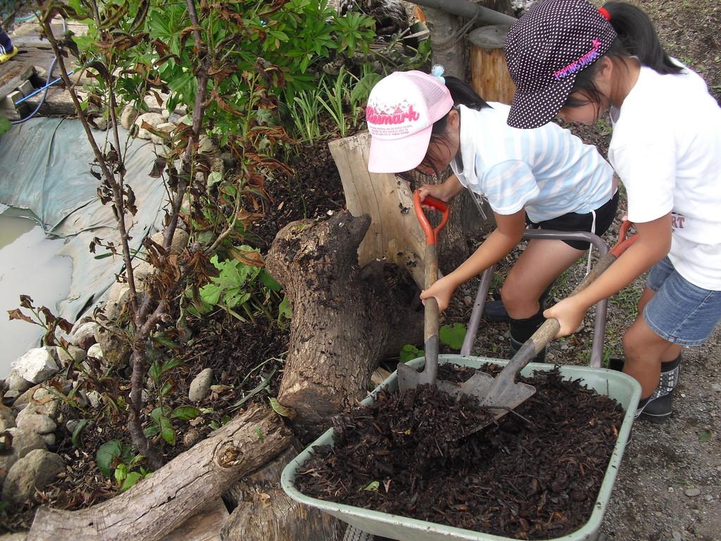 ほかの木の下にも腐葉土を入れてあげます。