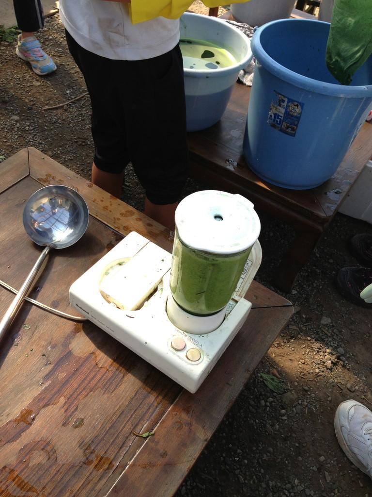 さて、茎から取った葉につかるほどの水を入れてミキサーにかけ、細かくします。