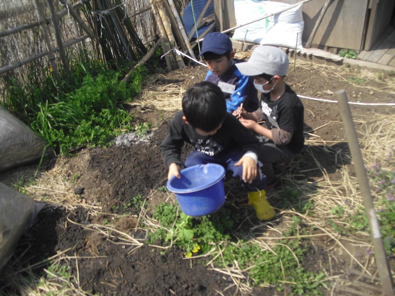 畑に腐葉土を足して栄養補給です。