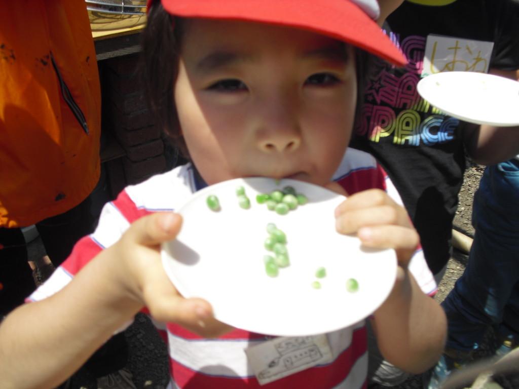 「あまい!」とひとこと!やっぱり取れたての野菜って甘いんですよね。それを感じてくれただけで、私たちは大満足!