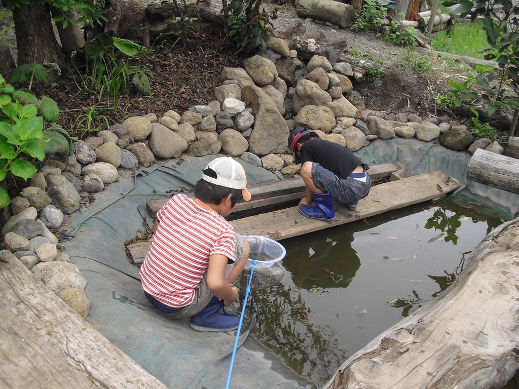 食べ終わったら、池の掃除です!