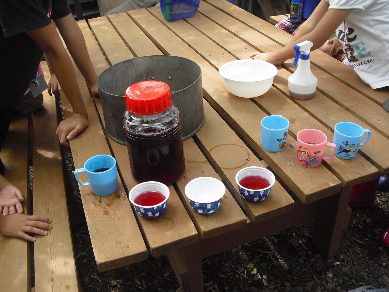 虫除けをつけて、ふじっころで取れた紫蘇で作ったジュース。夏バテ防止に飲んでから出発!