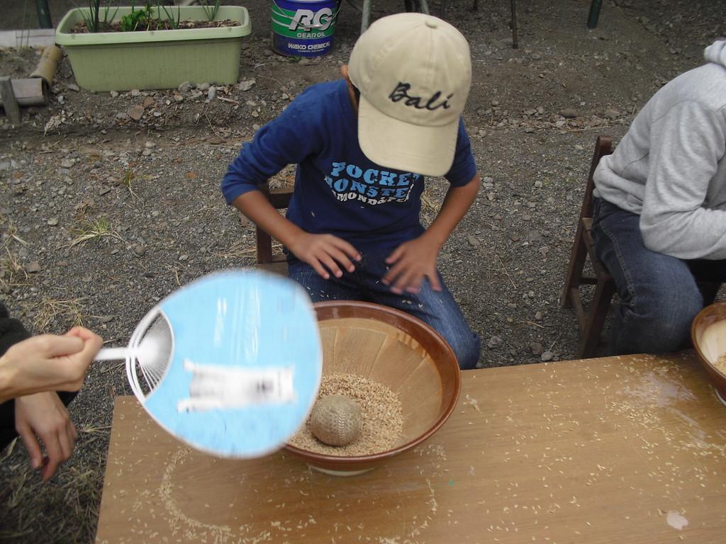 これは、この間も行った米の揉み取りです。
