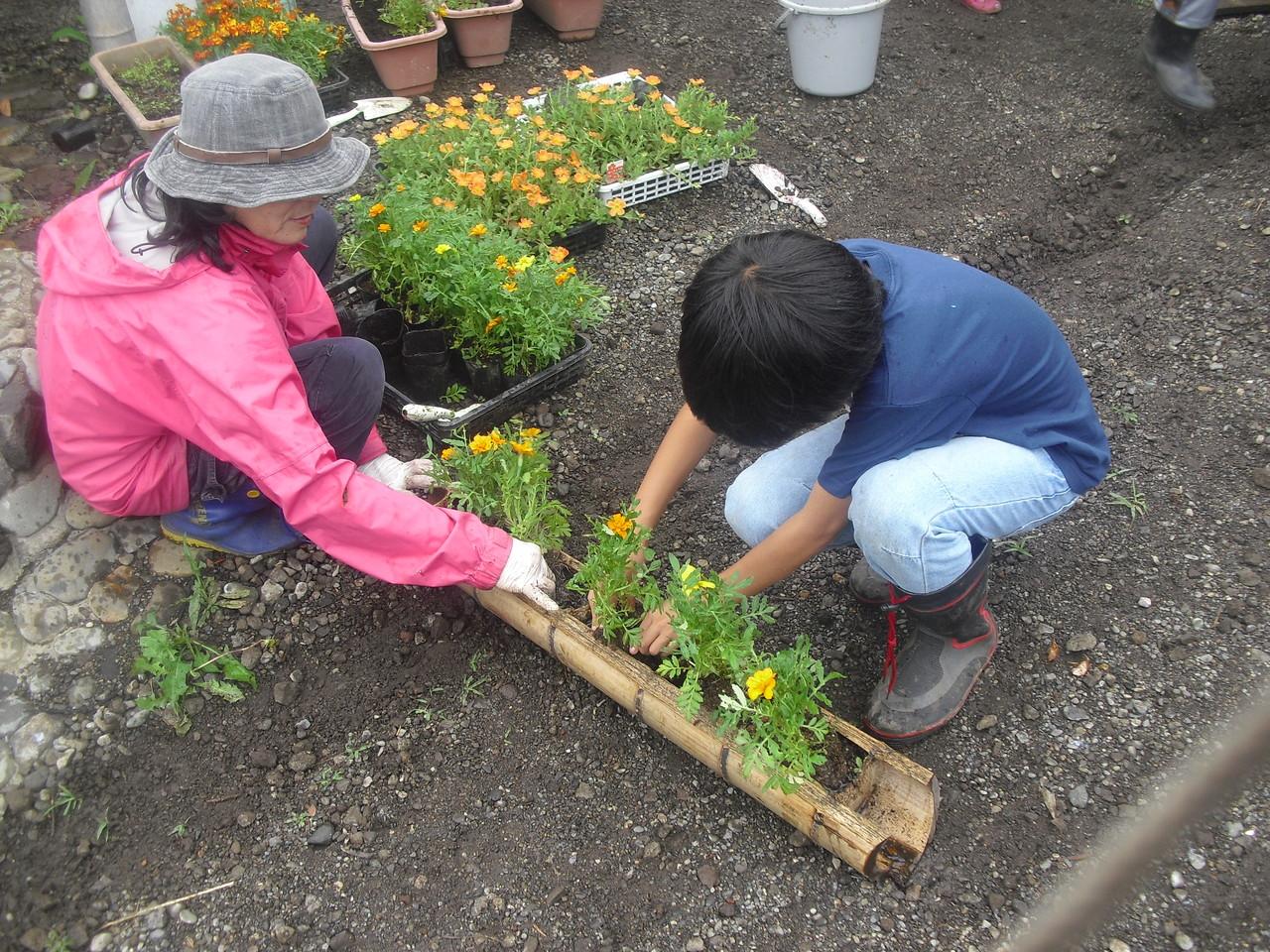 市から頂いたお花を植え替えています。