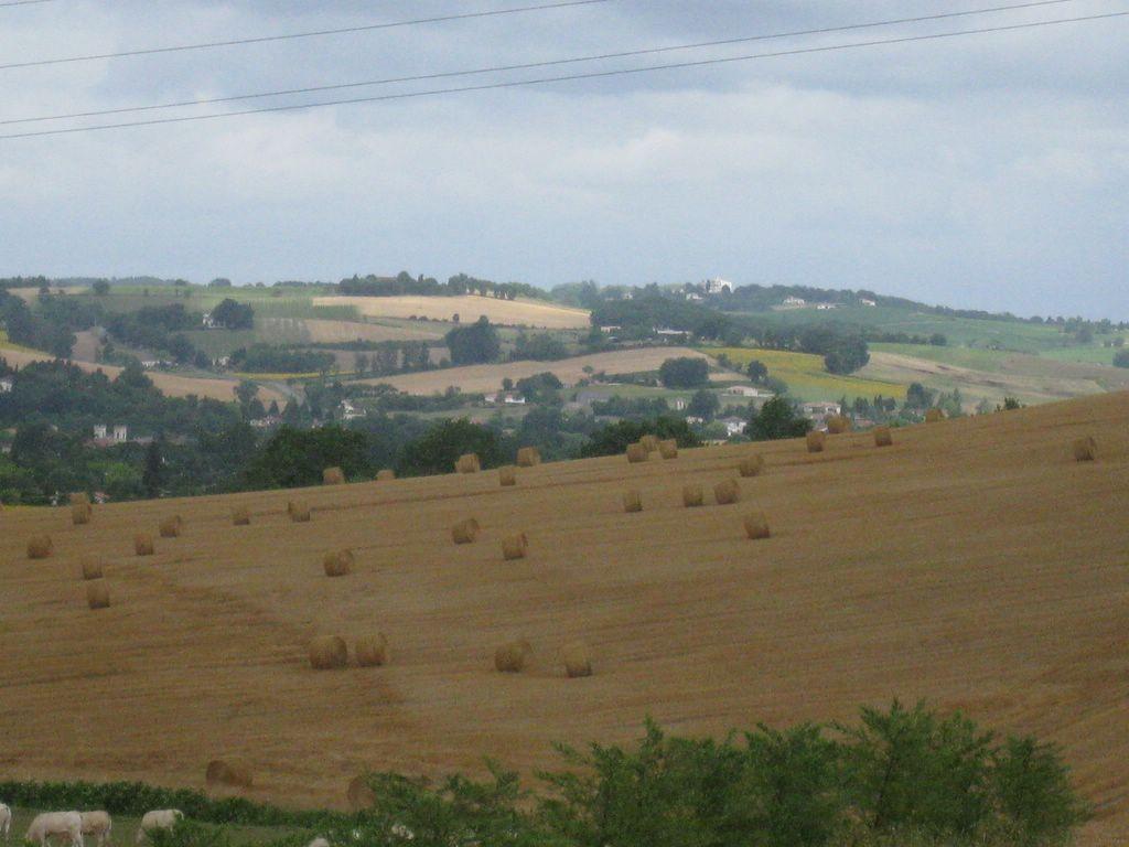 Lot-et-Garonne - Un paysage typique
