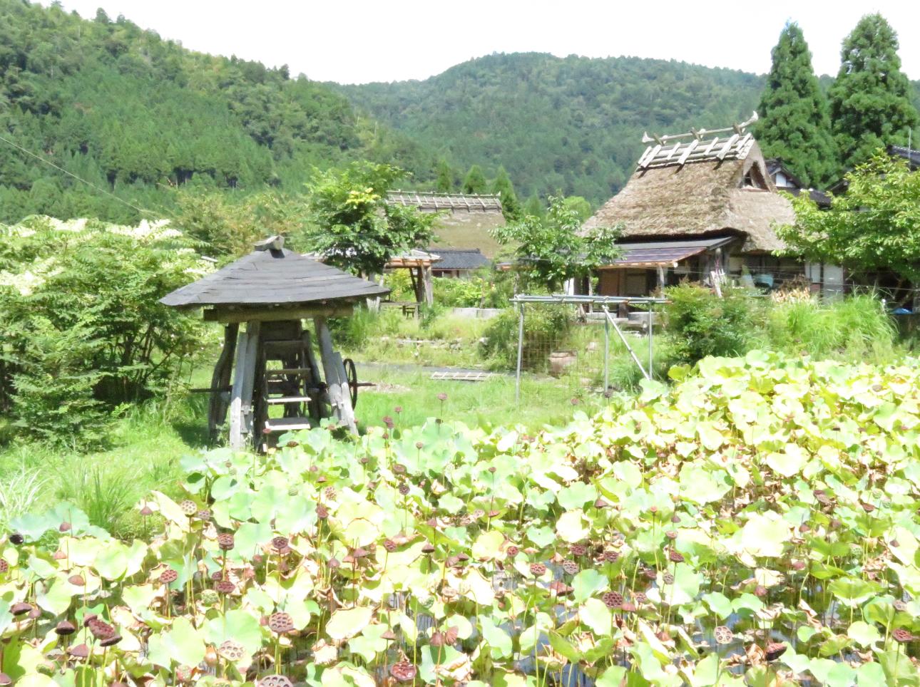 京都 旧武家屋敷「ほろろん」宿泊体験