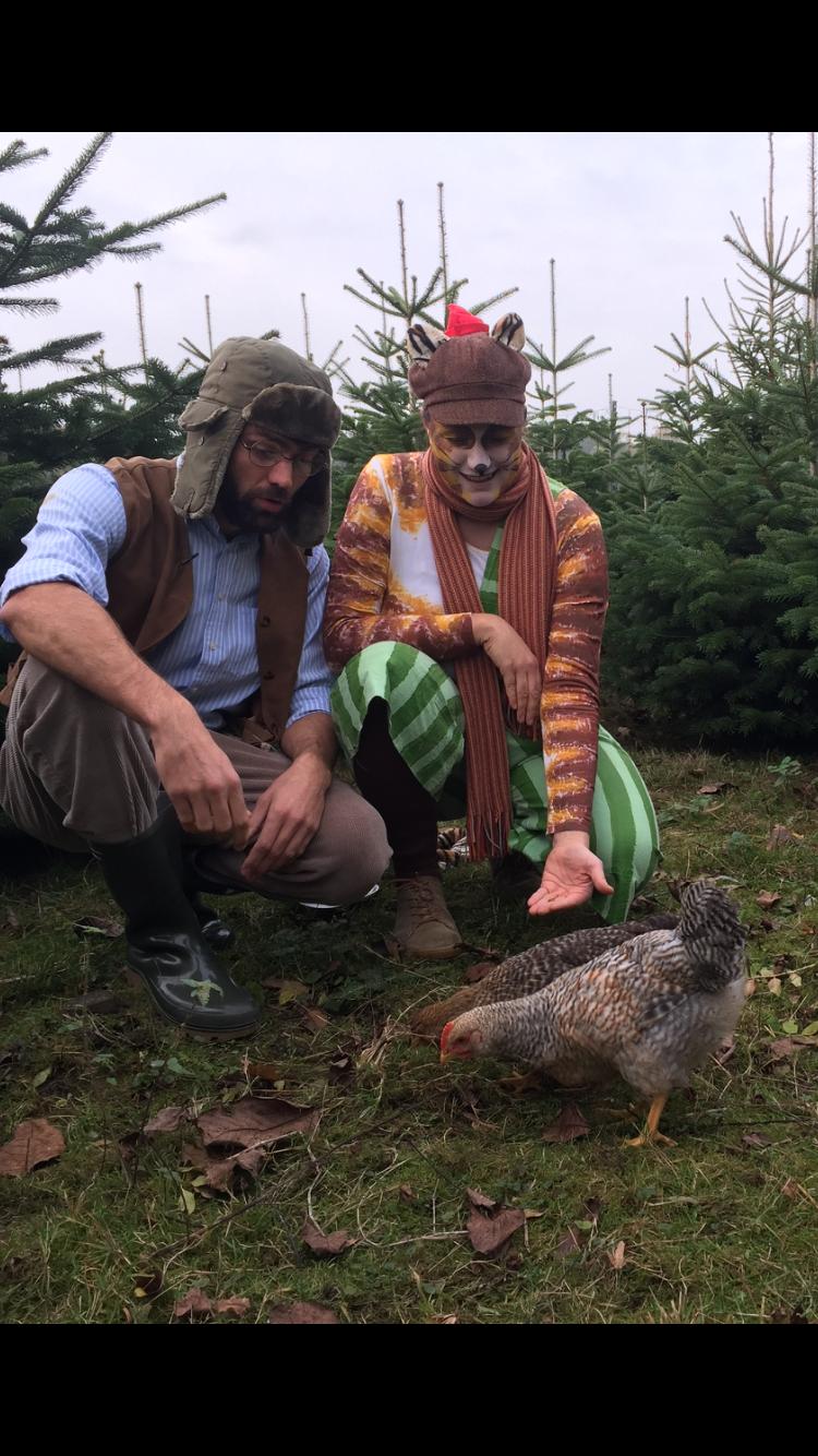 Pettersson und Findus beim Hühner füttern...