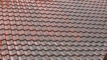 Dachziegel reinigen