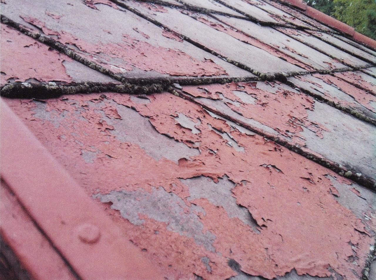 Gut gemocht Das Dach reinigen und versiegeln - Dachreinigung und Moosentfernung SC37