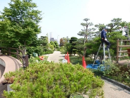 目黒天空庭園①