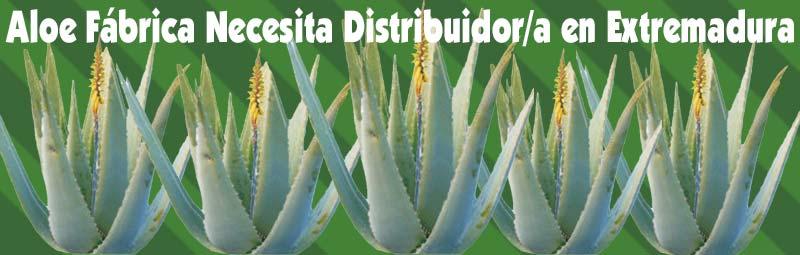 Fábrica Aloe Vera busca, necesita Distribuidores Independientes Exialoe en Extremadura Caceres y Badajoz
