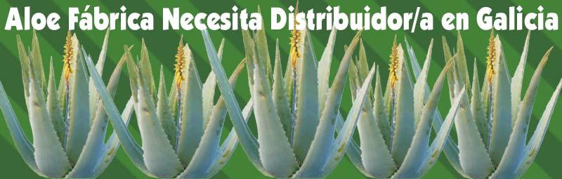 Fábrica Aloe Vera busca, necesita Distribuidores Independientes Exialoe en Galicia Pontevedra, Lugo, La Coruña y Ourense
