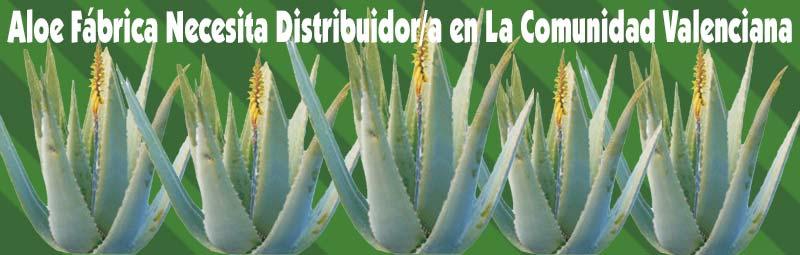 Fábrica Aloe Vera busca, necesita Distribuidores Independientes Exialoe en Comunidad Valenciana, Valencia, Alicante y Castellón
