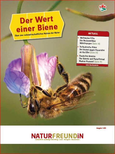 2011-1  NATURFREUNDiN | Der Wert einer Biene - Über den volkswirtschaftlichen Wert der Natur