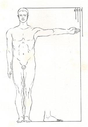 (11) Illustrazione tratta da: Josef Giesen, Dürers Proportionsstudien im Rahmen der allgemeinen Proportionsentwicklung, Bonn 1930, Tavola I.1
