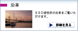 SSD研究所 沿革