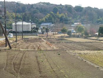 藤沢市・引地川親水公園付近の田園風景