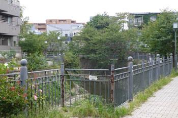 横浜上大岡・大岡川と街並み