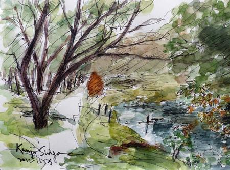 大和市・ふれあいの森の引地川