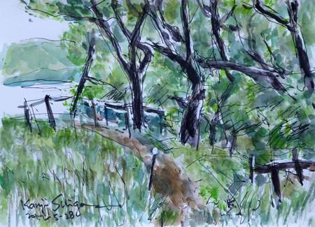 藤沢市・石川の雑木林と小道