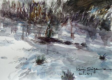 藤沢市・引地川の水の流れ