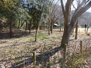 藤沢・新林公園の長屋門付近