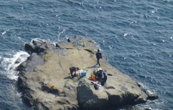 藤沢・江ノ島の岩場で遊ぶ