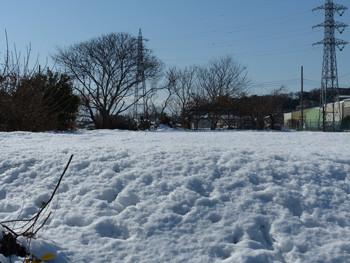 藤沢・立石の雪景色