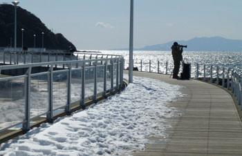 藤沢・片瀬漁港のカメラマン
