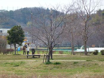 藤沢市・引地川親水公園