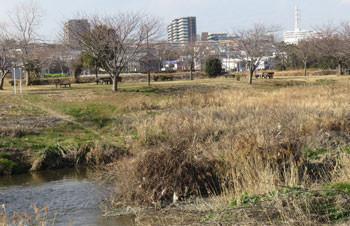 藤沢・引地川親水公園と湘南ライフタウン