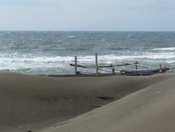 藤沢・辻堂海浜公園の砂浜と海