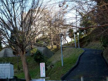 鎌倉市・鎌倉山のT社の私有地