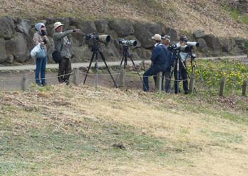 横浜・四季の森公園でのカメラマン
