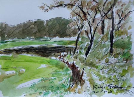 藤沢市・石川の小道と雑木林