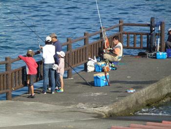 小田原市・小田原漁港での魚釣り