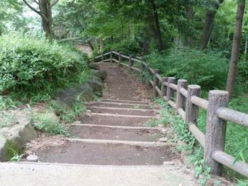 横浜市港北区・大倉山公園の階段