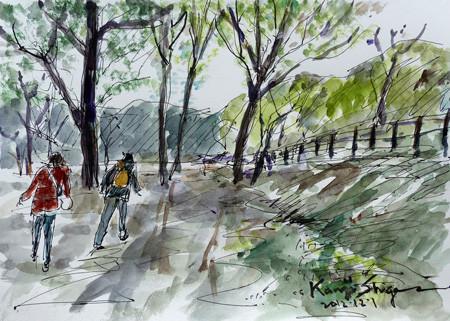 大和市・泉の森のしらかしの広場