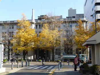 横浜・日本大通りの三井物産ビル