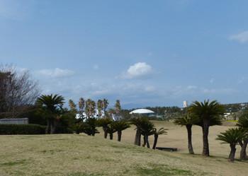 藤沢・辻堂海浜公園の芝生広場