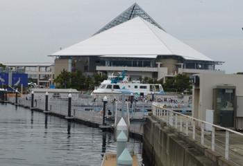 横浜・八景島シーパラダイスのアクアミュージアム