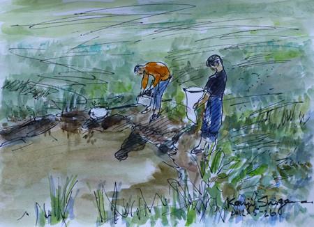 藤沢市・石川の池と虫取り