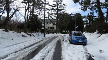 藤沢・県立体育センターの道路とグリーンハウス