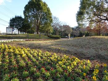 藤沢市・春を待つ船地蔵公園