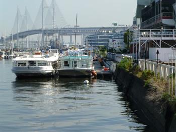 横浜・本牧ふ頭の貯木場とベイブリッジ