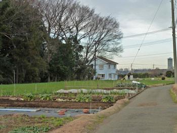 横浜・東俣野中央公園付近の畑の中の一軒家